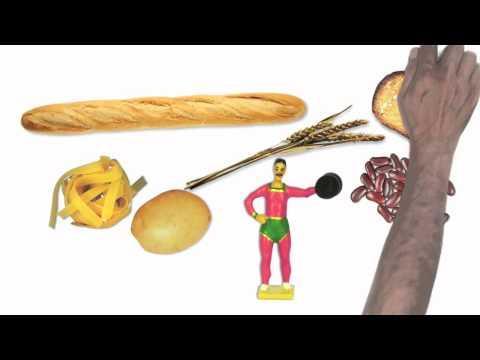 Équilibre Alimentaire Et Diabète