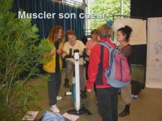 Journée Sport Et Santé Pour Les Seniors