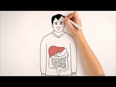[CHOLESTEROL] Qu'est Ce Que Le Cholestérol ?
