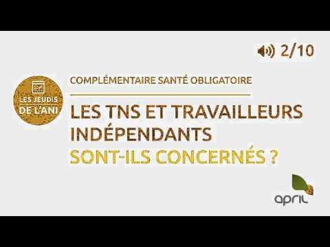 ANI: Les Travailleurs Non Salariés Et Les Indépendants Sont-ils Concernés ?