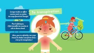 Effets de l'activité physique sur le corps