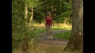 Les seniors et l'activité physique